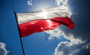 Moje oświadczenie dotyczące eskalacji przemocy na tle politycznym w Myszkowie i Polsce